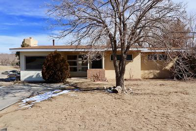 San Juan County Single Family Home For Sale: 3316 N Dustin Avenue