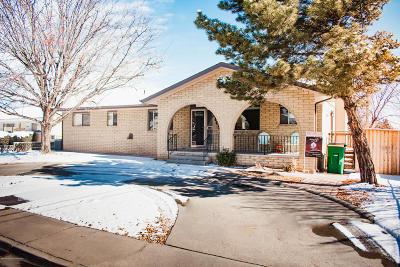 Farmington Single Family Home For Sale: 2108 N Santiago Avenue