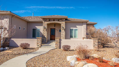 Farmington Single Family Home For Sale: 4101 Vista Pinon Drive