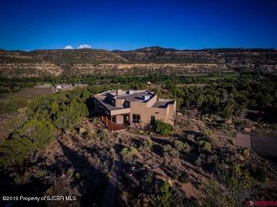 San Juan County Single Family Home For Sale: 32 Road 2090