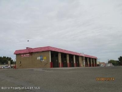 San Juan County Commercial For Sale: 104 S Vine Avenue