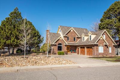 Farmington Single Family Home For Sale: 720 W Rosa Street