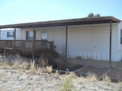 Aztec, Flora Vista Manufactured Home For Sale: 45 Road 3320