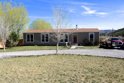Manufactured Home For Sale: 33 Road 2469