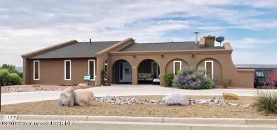 San Juan County Single Family Home For Sale: 123 W Twilight Drive