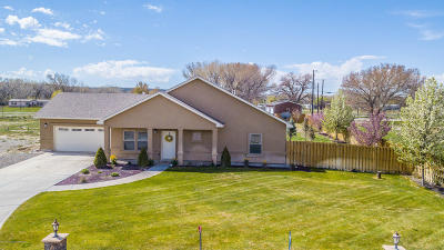 Aztec, Flora Vista Single Family Home For Sale: 10 Road 2841