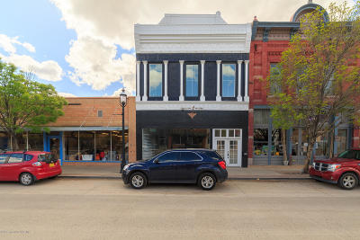San Juan County Commercial For Sale: 109 S Main Avenue