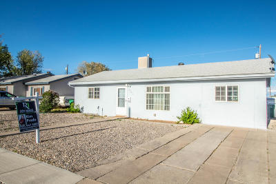 Farmington Single Family Home For Sale: 2302 N Mesa Verde Avenue