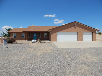 Single Family Home For Sale: 19 Road 3943