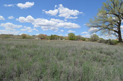 Farmington Residential Lots & Land For Sale: Nya Nm 170
