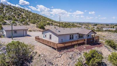 Aztec, Flora Vista Manufactured Home For Sale: 20 Road 2951