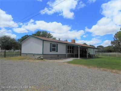 Aztec, Flora Vista Manufactured Home For Sale: 37 Road 3403