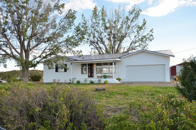 San Juan County Single Family Home For Sale: 303 Road 5500