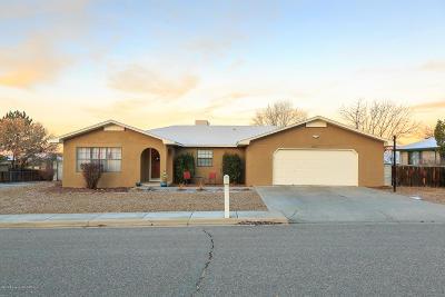 Farmington NM Single Family Home For Sale: $199,900