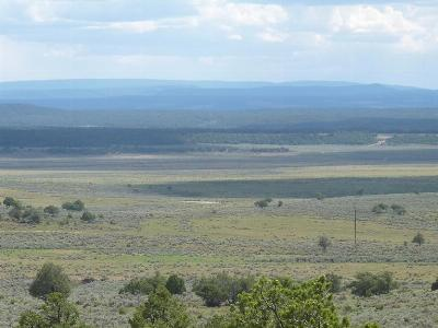 Farm & Ranch For Sale: 24889 Nm Highway 84