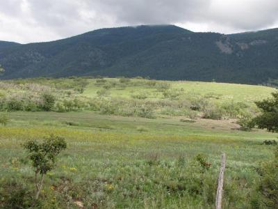 Mora NM Residential Lots & Land For Sale: $359,900