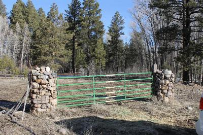 Chama NM Residential Lots & Land For Sale: $522,800