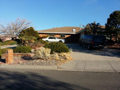 Bernalillo County Single Family Home For Sale: 1700 Soplo Road SE