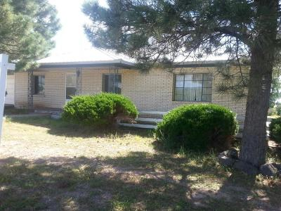 Torrance County Single Family Home For Sale: 8171 State Hwy 55