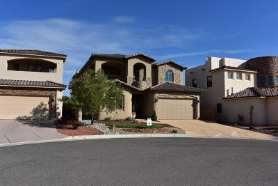Bernalillo Single Family Home For Sale: 1014 C De Baca Lane