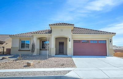 Albuquerque Single Family Home For Sale: 2128 Goose Lake Trail NW