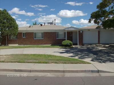 Albuquerque Single Family Home For Sale: 336 Yucca Drive NW