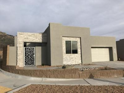 Albuquerque NM Single Family Home For Sale: $639,800