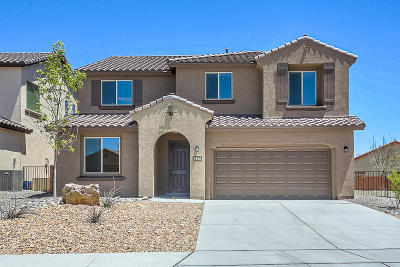 Albuquerque Single Family Home For Sale: 9500 Big Rock Drive NW