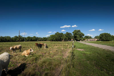 Albuquerque Residential Lots & Land For Sale: 1000 Gabaldon Road NW