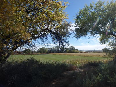 Bernalillo County Farm & Ranch For Sale: San Antonio Farm