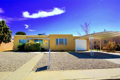 Albuquerque Single Family Home Active Under Contract - Short : 632 Dakota Street SE