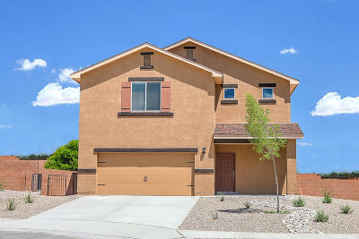 Albuquerque, Rio Rancho Single Family Home For Sale: 6908 Mountain Hawk Loop NE