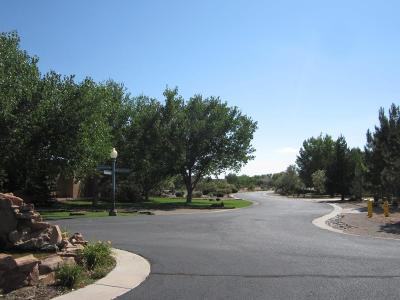 Bernalillo Residential Lots & Land For Sale: 757 Camino Vista Rio