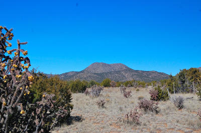 Farm & Ranch For Sale: San Pedro Ranch