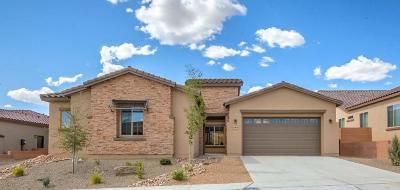 Rio Rancho Single Family Home For Sale: 4106 Pico Norte Lane NE