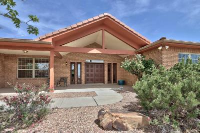 Albuquerque NM Single Family Home For Sale: $579,000
