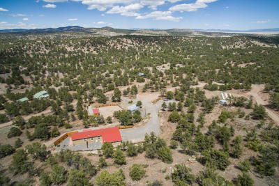 Catron County Single Family Home For Sale: 28 Log Cabin Drive