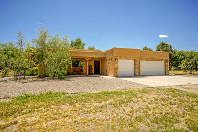 Bernalillo Single Family Home For Sale: 213 Ricardo Lane