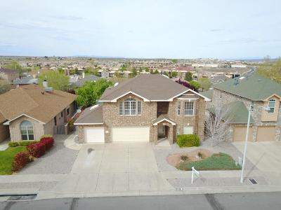 Albuquerque Single Family Home For Sale: 4731 Summerlin Road NW