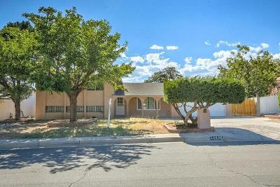 Albuquerque Single Family Home For Sale: 3605 Chelwood Park Boulevard NE