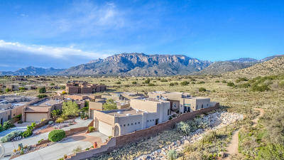 Albuquerque Single Family Home For Sale: 5259 Foothills Trail NE