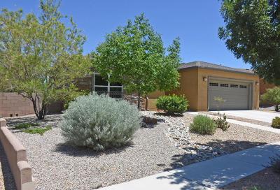 Valencia County Single Family Home For Sale: 520 Promenade Trail