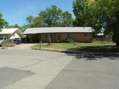 Valencia County Single Family Home For Sale: 1028 Onate Court SE