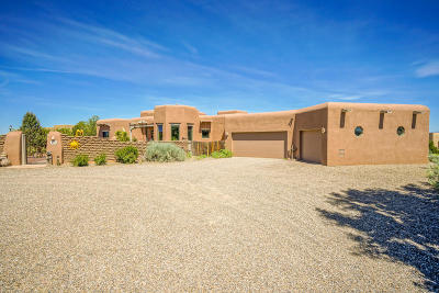 Placitas Single Family Home For Sale: 1 Anatoly Court