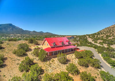 Placitas Single Family Home For Sale: 40 Camino De La Buena Vista