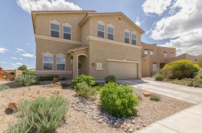 Valencia County Single Family Home For Sale: 3581 Wagon Wheel Street SW