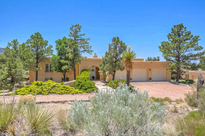 Bernalillo County Single Family Home For Sale: 171 Big Horn Ridge Drive NE