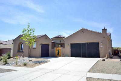 Albuquerque Single Family Home For Sale: 2228 Cebolla Creek Way NW