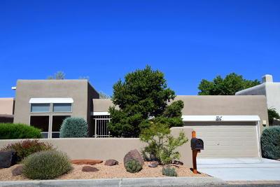 Sandia Heights Single Family Home For Sale: 2751 Cliffrose Drive NE