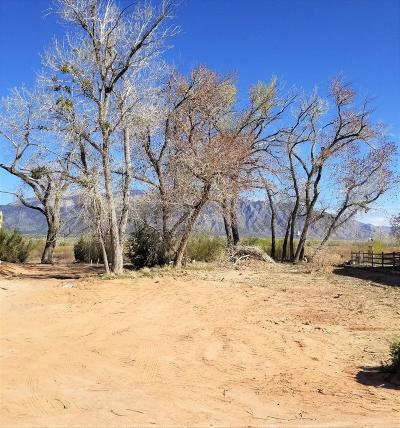 Placitas, Bernalillo Single Family Home For Sale: 1110 Avenida Los Suenos